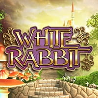 White Rabbit Spielautomat